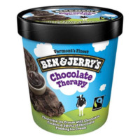 Ben & Jerry's Ice Cream (Chocolate Therapy)