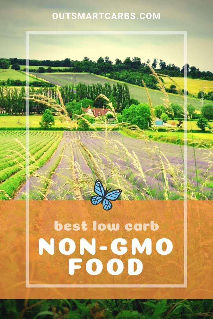 best-low-carb-non-gmo-food